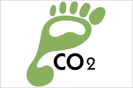 carbon-footprint-green