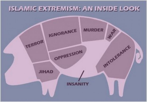 Islam's anatomy