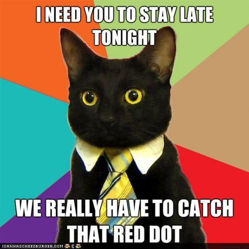 advice-animals-memes-business-cat-red-dot