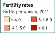 Fertility-rate-box