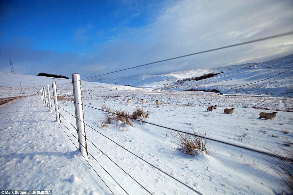 UK-snow-field