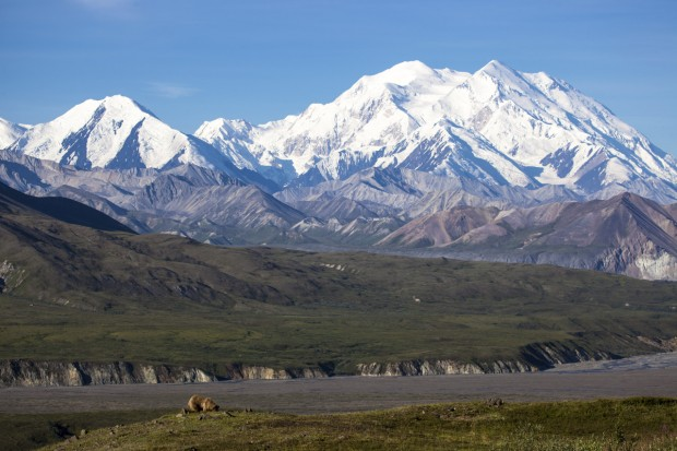 Evening Photo Mt Mckinley Denali National Park Alaska