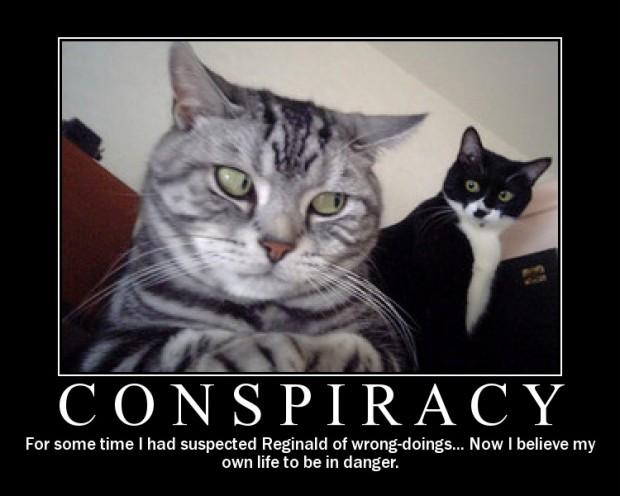 conspiracy-cat2