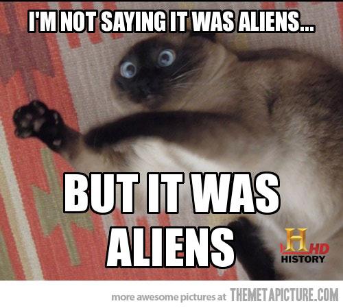 funny-cat-conspiracy-aliens