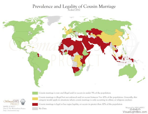 Islam and cousin marriage – Blazing Cat Fur