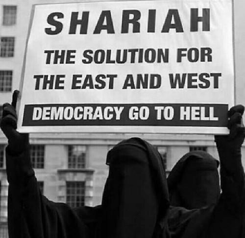 Image result for sharia europe