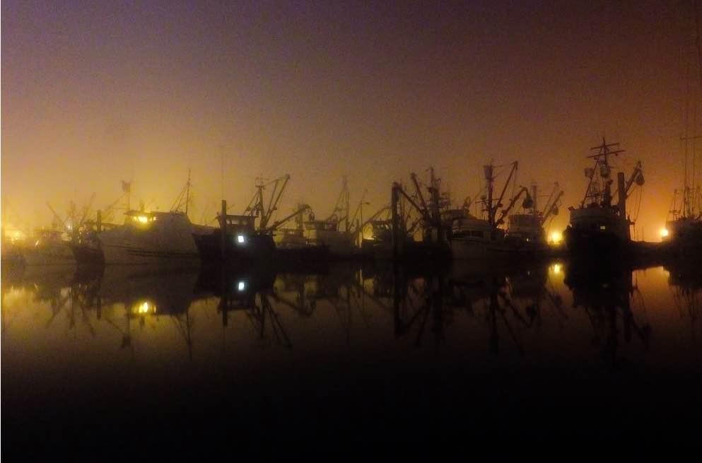 Alaska-foggy-night