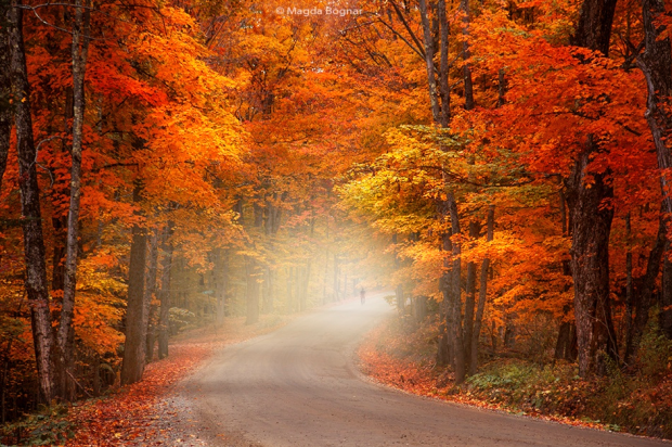 Autumn-walking-Vermont