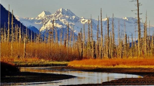 Cordova-Alaska