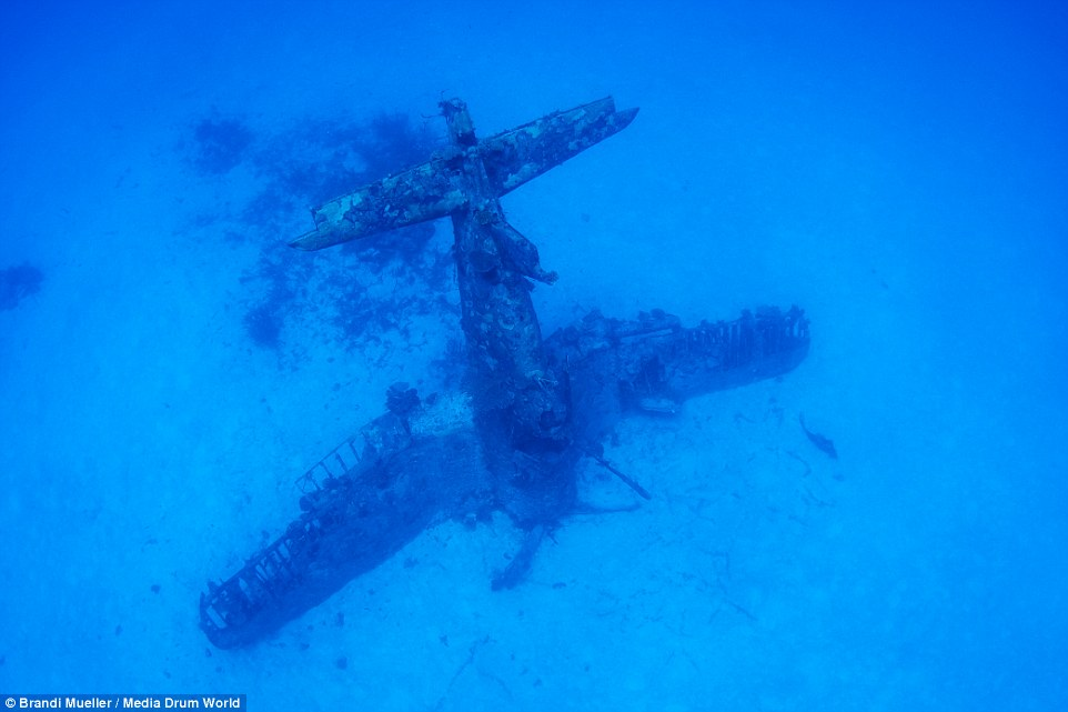 F4U Corsair sea bottom