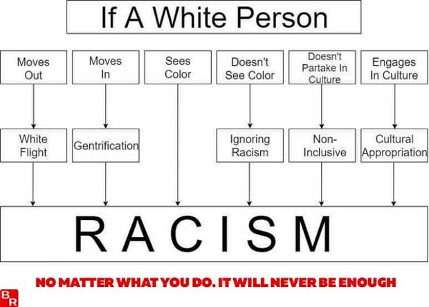 https://blazingcatfur.ca/wp-content/uploads/2017/10/Everything-is-racist-if-whites-do-it.jpg