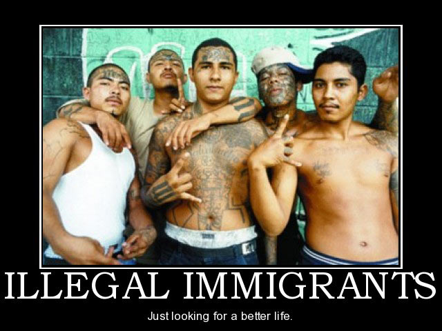 illegal immigrants and criminals Thus, there were 1,797 criminal convictions of natives for every 100,000 natives, 899 criminal convictions of illegal immigrants for every 100,000 illegal immigrants, and 611 criminal convictions.