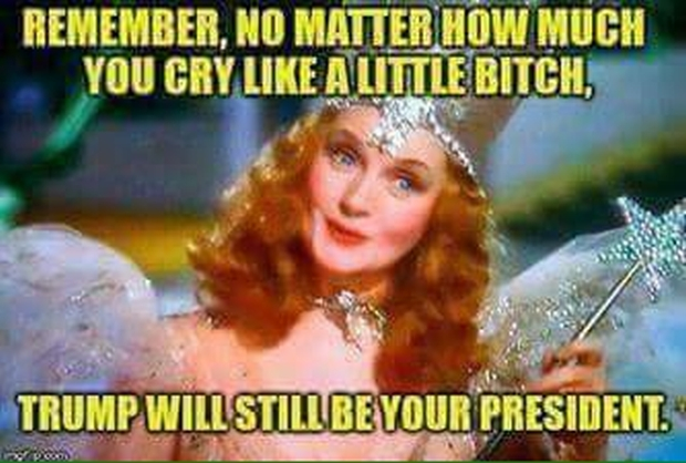 trump-still-your-president-good-witch-of