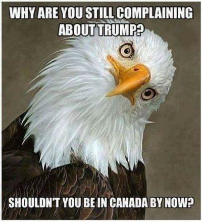 eagle-trump-canada-400x439.jpg