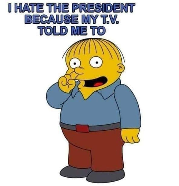 tv-told-me-to-hate-the-president-simpson