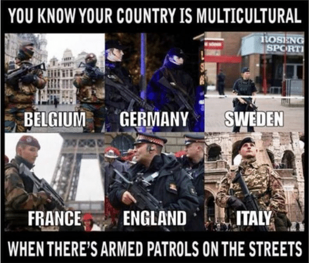 you-know-your-country-is-multicultural-n