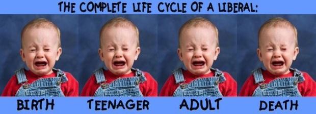 liberal-life-cycle.jpg