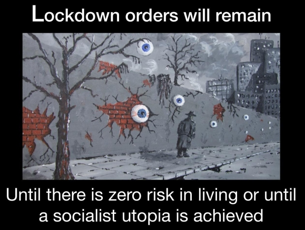 coronavirus-socialism.jpg